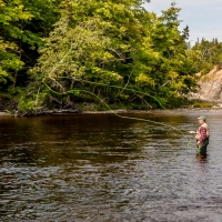 Salmon Fishing on the Margaree
