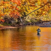 October on the Margaree River, NS