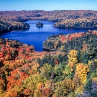 Aerial of Autumn Near Tremblant