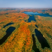 Aerial of Autumn Near Mont Tremblant